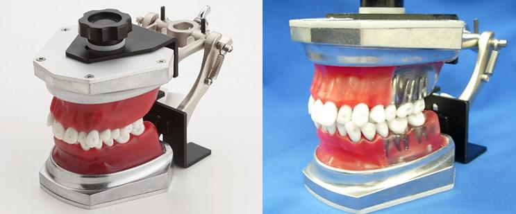 Series Ortodonticas